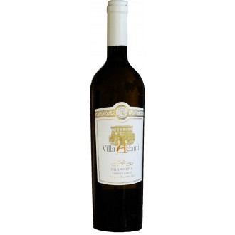 Víno - Víno bílé italské Falanghina IGT Villa Adami 075l
