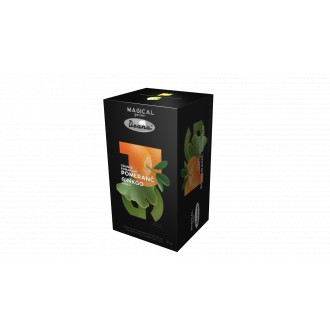 Čaj - Magical Garden POMERANČ GINKGO čaj 20 sáčků